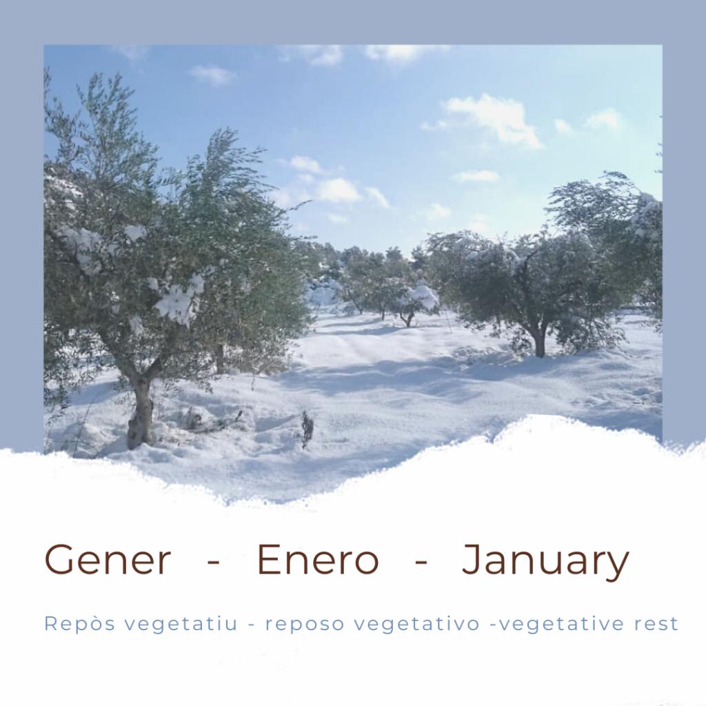 calendari gener