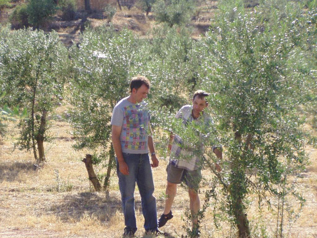 Vallcansada 2005