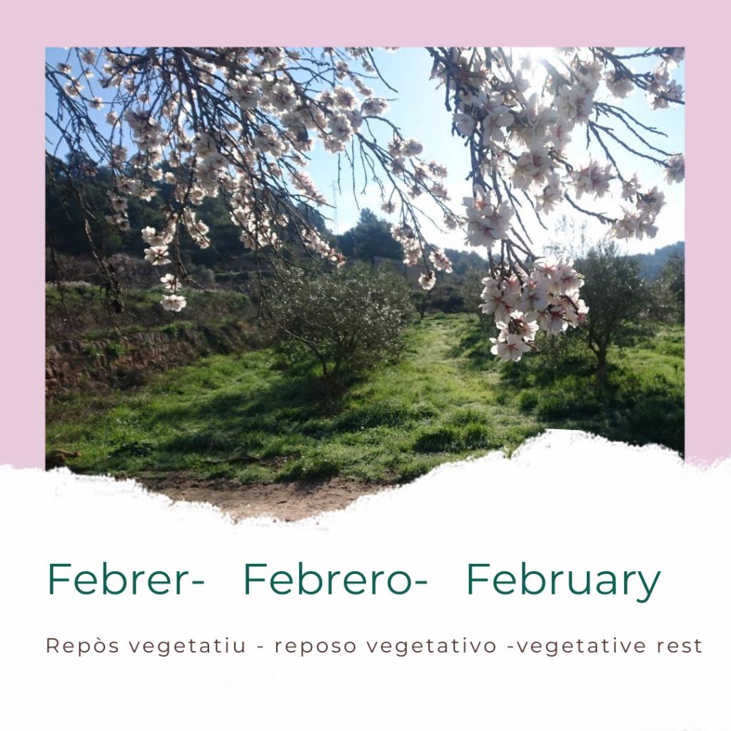 calendari_oliver_febrer