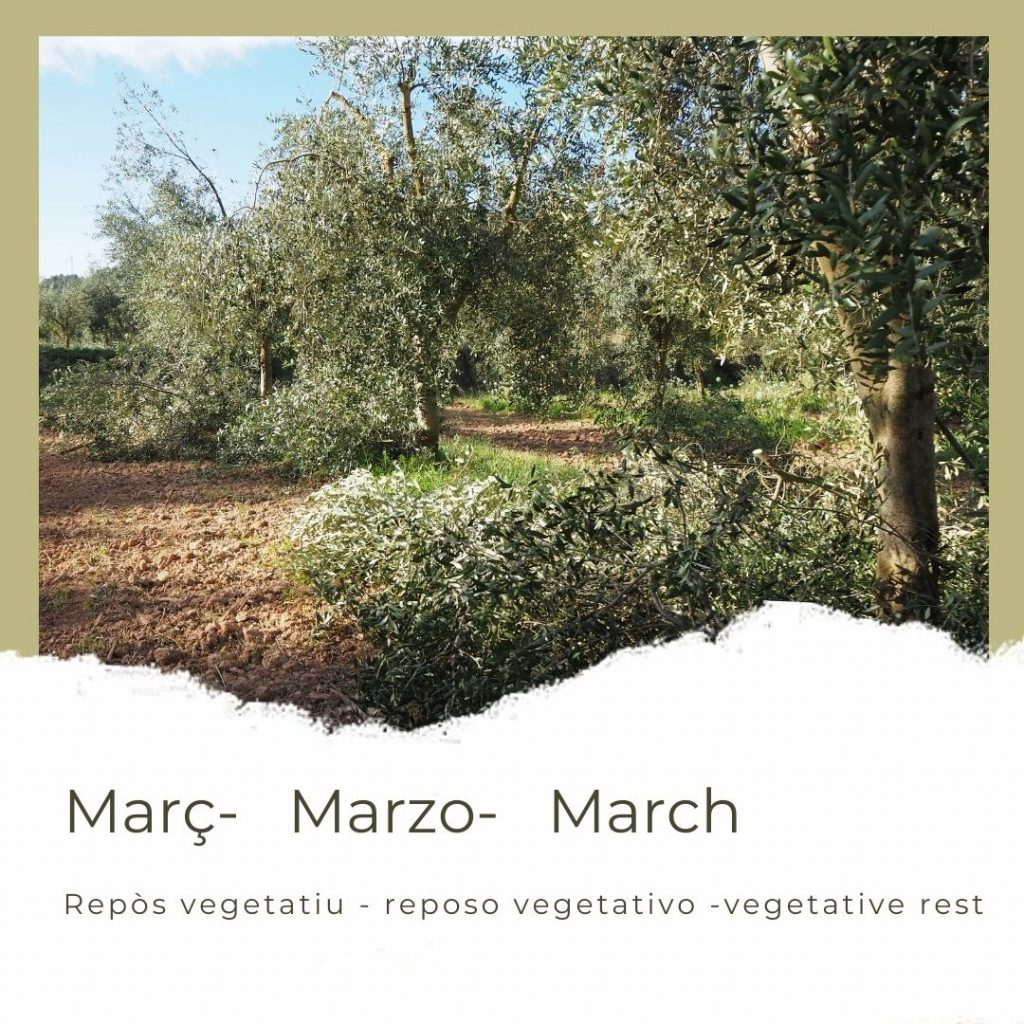 març_marzo_march